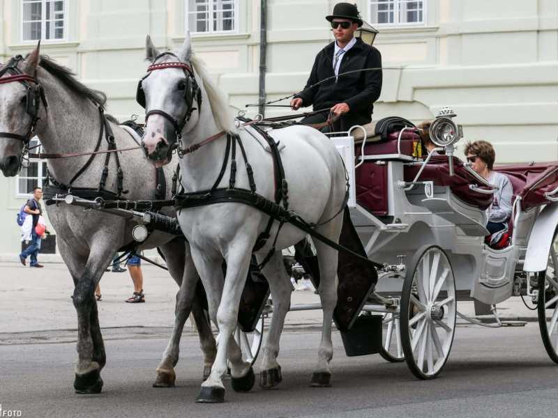 Fiaker (Pferdekutsche) der Fiakerzentrale in Wien